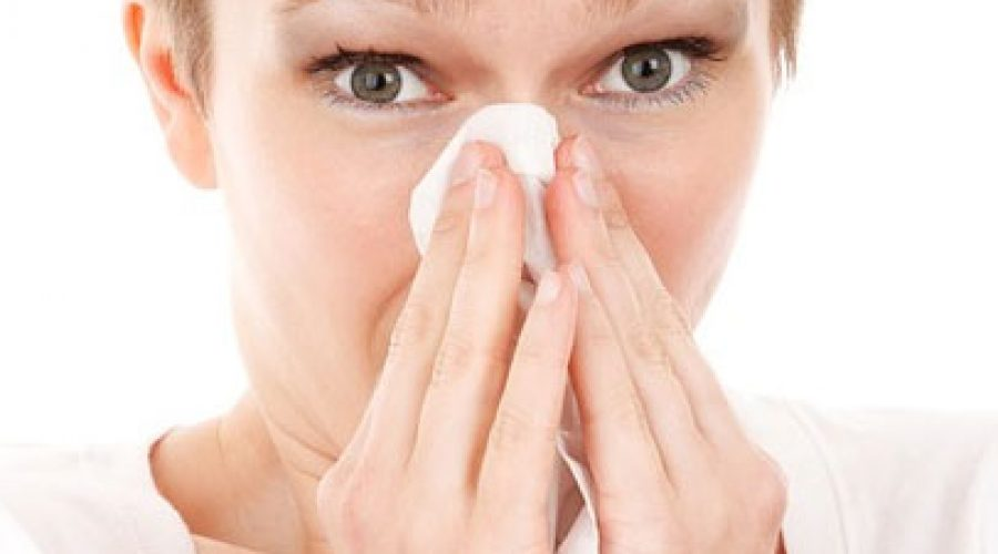 Janitorial Services Help Keep Allergies under Control