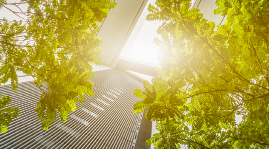 What to look for in a LEED Certified cleaning program